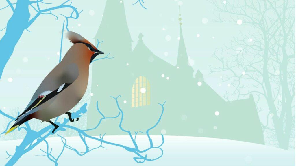 Jul på Bislett